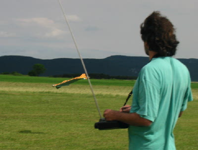 Nach den ern chternden erfahrungen mit der ersten arado for Was macht man gegen kleine fliegen in der blumenerde