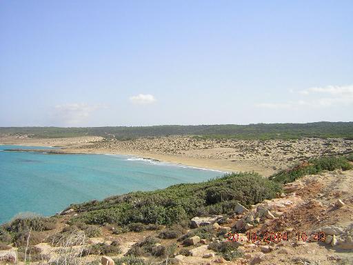 Schildkröten Zypern